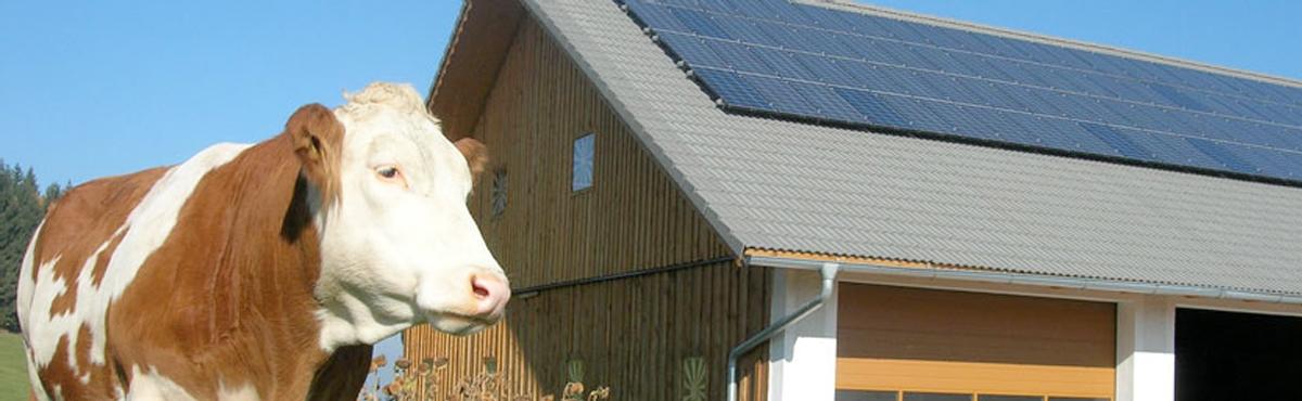 PVA Leasing Header Photovoltaik für Landwirte